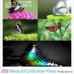 25 تصویرزمینه پروانههای زیبا – Beautiful Butterflies wallpapers