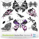 وکتور زیبای پروانه شماره 2 – 2 Butterflies Vectors