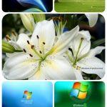 دانلود والپیپر ویندوز 8 – Windows 8 Wallpapers Pack