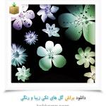 دانلود براش گل های تکی زیبا و رنگی