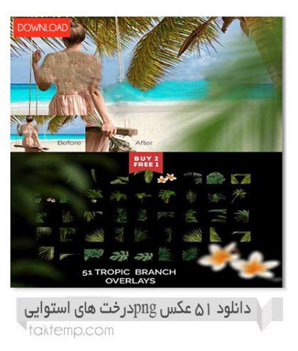 دانلود ۵۱ عکس PNG درخت های استوایی