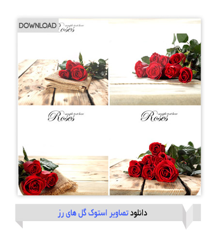 red-rosses
