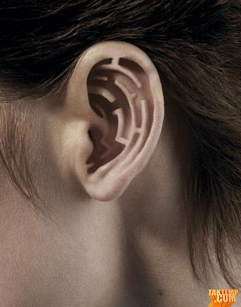 4-photo-manipulation-ear
