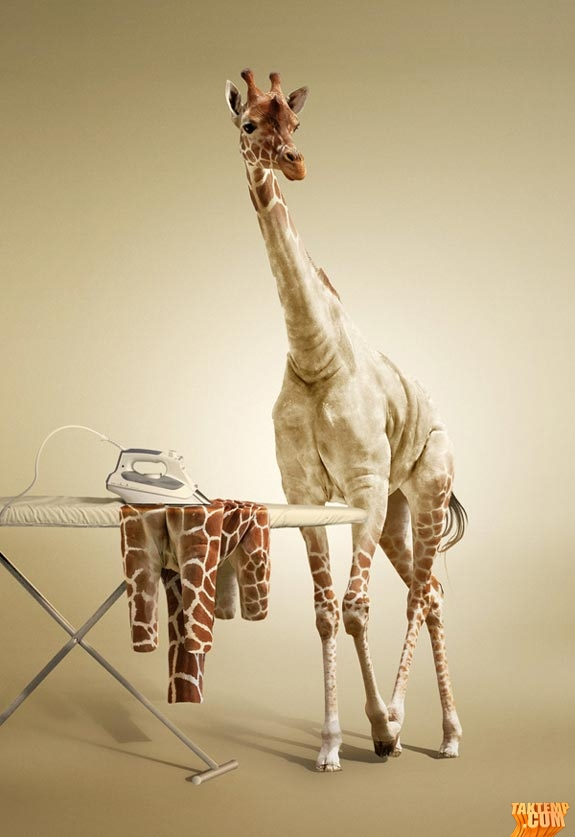 6-photo-manipulation-giraffee